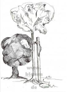 Junger Baum_